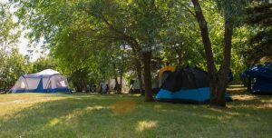 tenting and camping